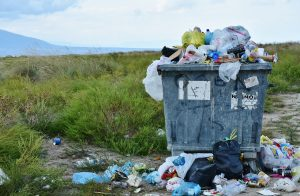 German-Canadian business will help manage waste in the Far East of Russia