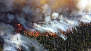 Russian and Canadian Arctic More Vulnerable to Peat Fires